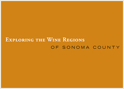 Exploring the Wine Regions of Sonoma County